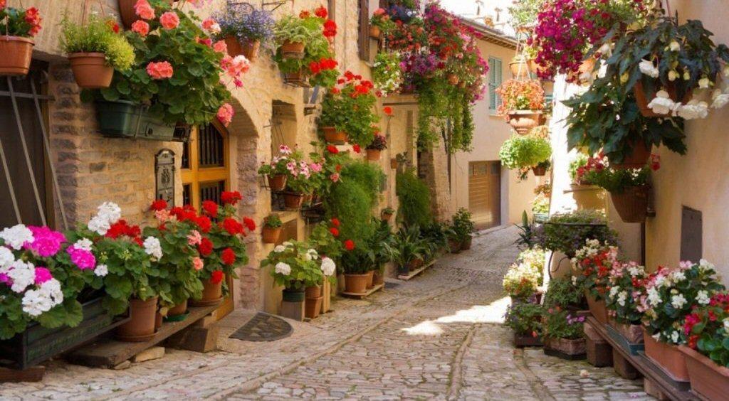 Agriturismo in Umbria 4